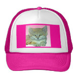 Gato nacional, fondo rosado gorro