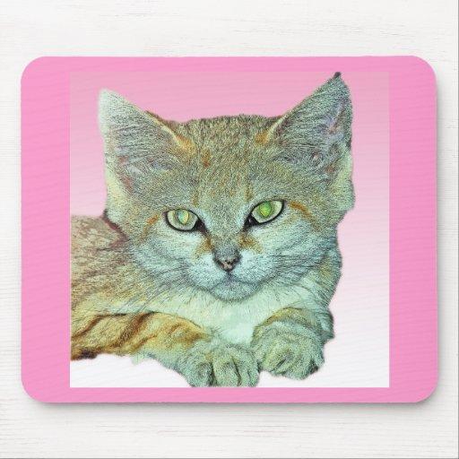 Gato nacional, fondo rosado tapetes de ratones