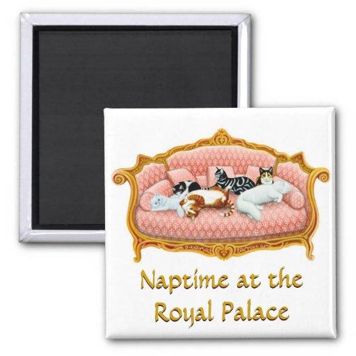 Gato Naptime en el imán del palacio