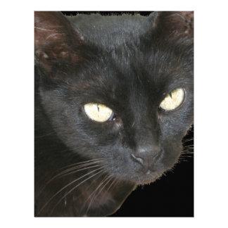 Gato negro aislado en fondo negro membretes personalizados
