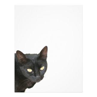 Gato negro aislado plantilla de membrete