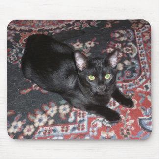 Gato negro alfombrilla de ratones
