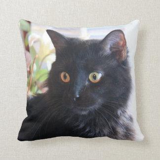 Gato negro, almohada de tiro cojín decorativo