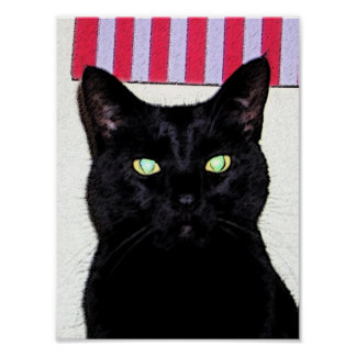 Gato negro/azul blanco rojo póster