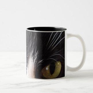 Gato negro, barbas blancas, ojos verdes taza de dos tonos
