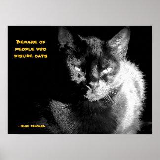 Gato negro brillante con proverbio póster