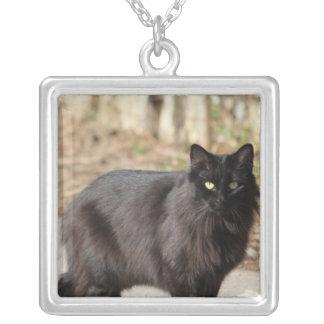 Gato negro colgante cuadrado