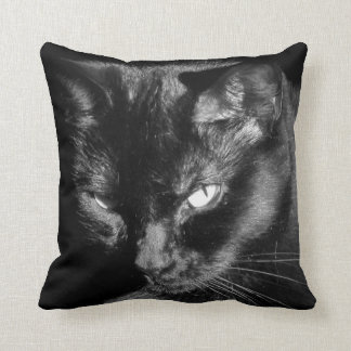 Gato negro con la mirada fija helada cojín