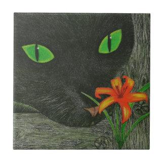 Gato negro con la teja del Daylily