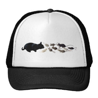 Gato negro con las ratas gorra