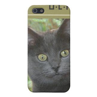 Gato negro con los ojos verdes iPhone 5 fundas