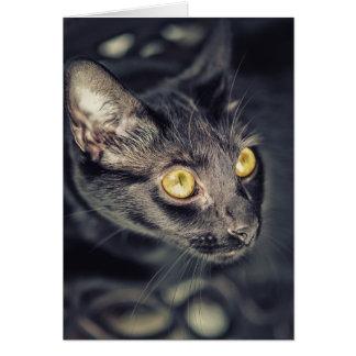 Gato negro con los ojos verdes tarjeta de felicitación