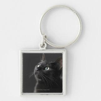 Gato negro contra el fondo negro, primer llavero cuadrado plateado
