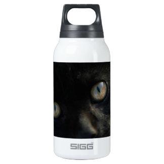 Gato negro de la EEK asustadizo
