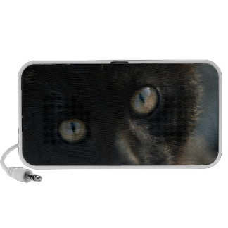 Gato negro de la EEK asustadizo Mp3 Altavoz