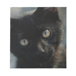 Gato negro de la EEK asustadizo Bloc De Papel