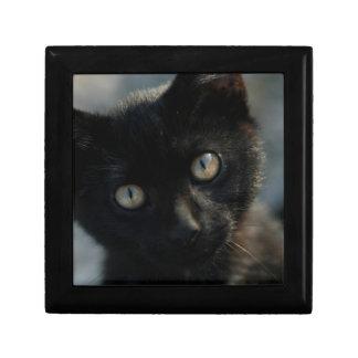 Gato negro de la EEK asustadizo Caja De Joyas