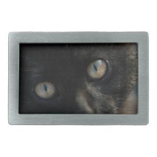 Gato negro de la EEK asustadizo Hebilla De Cinturon