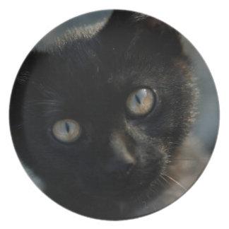 Gato negro de la EEK asustadizo Plato Para Fiesta