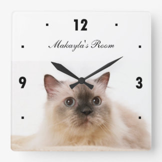 Gato negro de la nariz reloj cuadrado