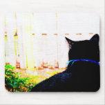 Gato negro de la parte posterior que mira hacia fu alfombrillas de ratón
