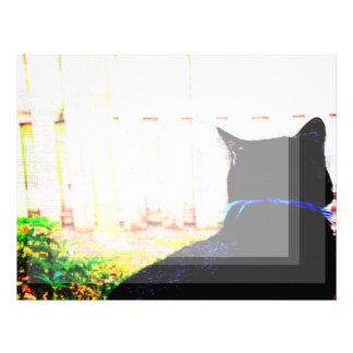 Gato negro de la parte posterior que mira hacia plantillas de membrete