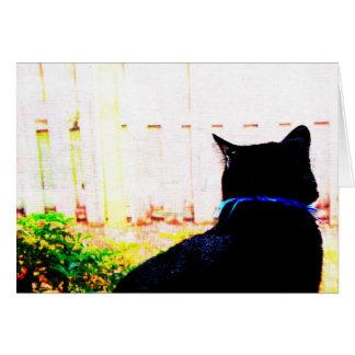 Gato negro de la parte posterior que mira hacia tarjeta pequeña
