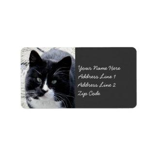 Gato negro de Tom con las marcas blancas Etiqueta De Dirección