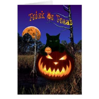 Gato negro del feliz Halloween, calabazas, luna de