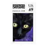 Gato negro del peekaboo - franqueo grande