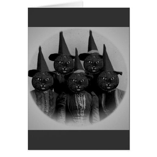 Gato negro del vintage/brujas felicitaciones