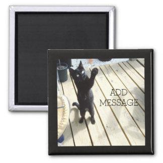 Gato negro divertido que golpea con fuerza el aire imán cuadrado