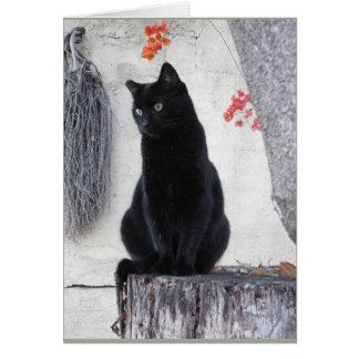 Gato negro elegante con el bougainvillea tarjeta de felicitación