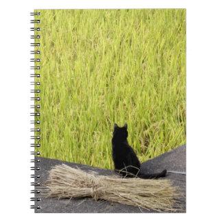 Gato negro en arroz de arroz libros de apuntes
