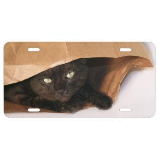 Gato negro en bolsa de papel marrón placa de matrícula
