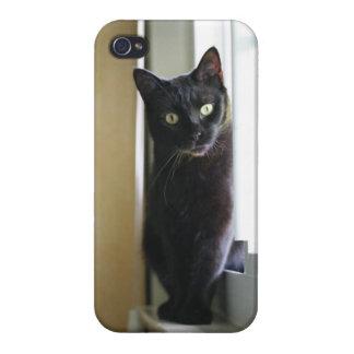 Gato negro en caso del iPhone 4 de la ventana iPhone 4 Funda