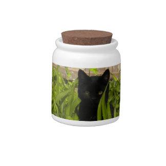 Gato negro en la invitación del gatito de los tuli jarras para caramelos