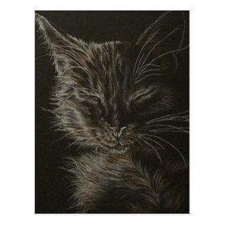 Gato negro en la postal