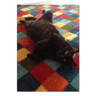 Gato negro en tarjeta de cumpleaños de la manta