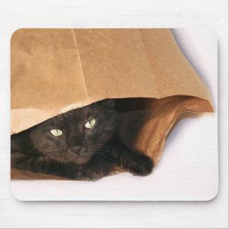 Gato negro en un mousepad del bolso