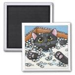 Gato negro en una caja de imán del gato de los cac