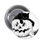 Gato negro en una calabaza pins