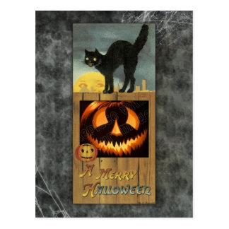 Gato negro en una cerca de madera con la calabaza postal