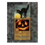 Gato negro en una cerca de madera con la calabaza tarjeta postal