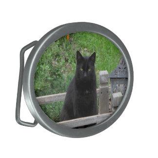Gato negro en una hebilla del cinturón del puente hebilla cinturón oval