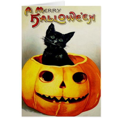 Gato negro en una linterna de Jack O Tarjetón