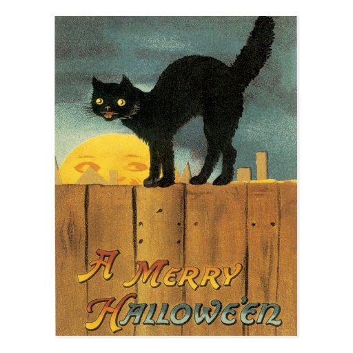 Gato negro en una postal del vintage de la cerca