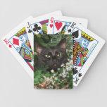 Gato negro en wildflowers baraja