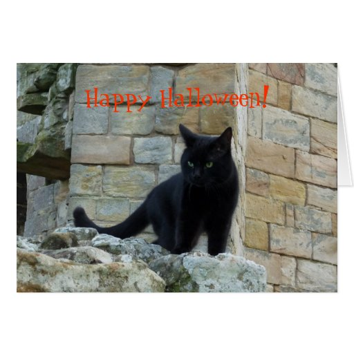 Gato negro - feliz Halloween Tarjeta De Felicitación