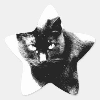 Gato negro. Gato negro de Halloween. Gatitos del Pegatinas Forma De Estrellaes